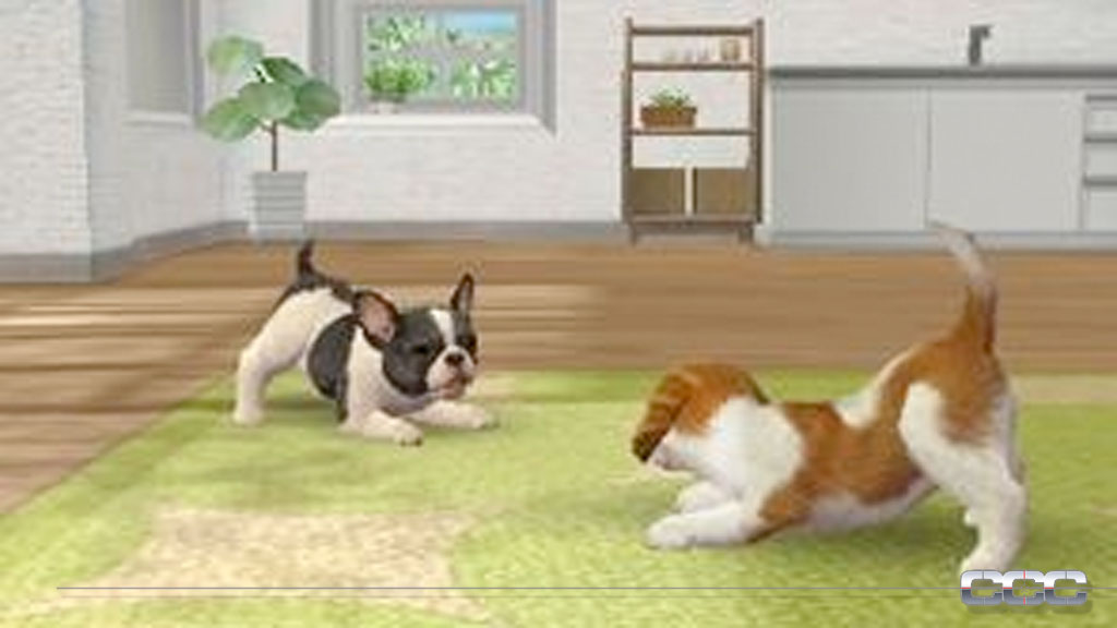 Toy Game On Ds : Nintendogs cats preview for nintendo ds cheat code
