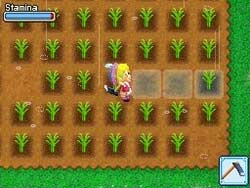 Harvest Moon DS: Grand Bazaar screenshot