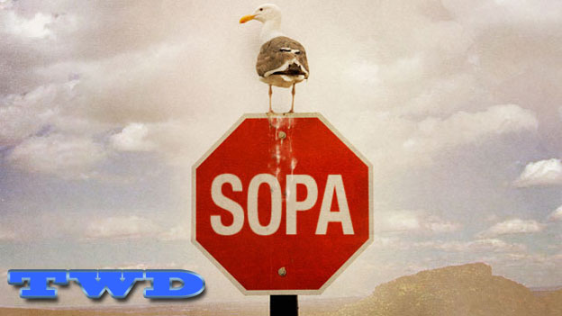 The Weekly Dish – SOPA On The Ropes