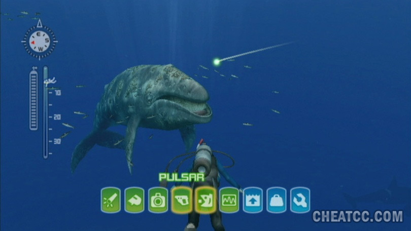 Endless Ocean: Blue World Review for Nintendo Wii