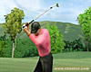 Tiger Woods PGA Tour 07 screenshot - click to enlarge