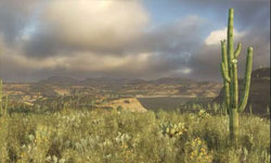 Baja screenshot