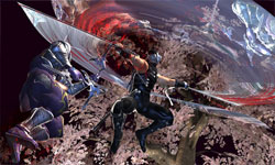 Ninja Gaiden 2 screenshot