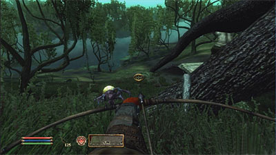 The Elder Scrolls: Shivering Isles screenshot