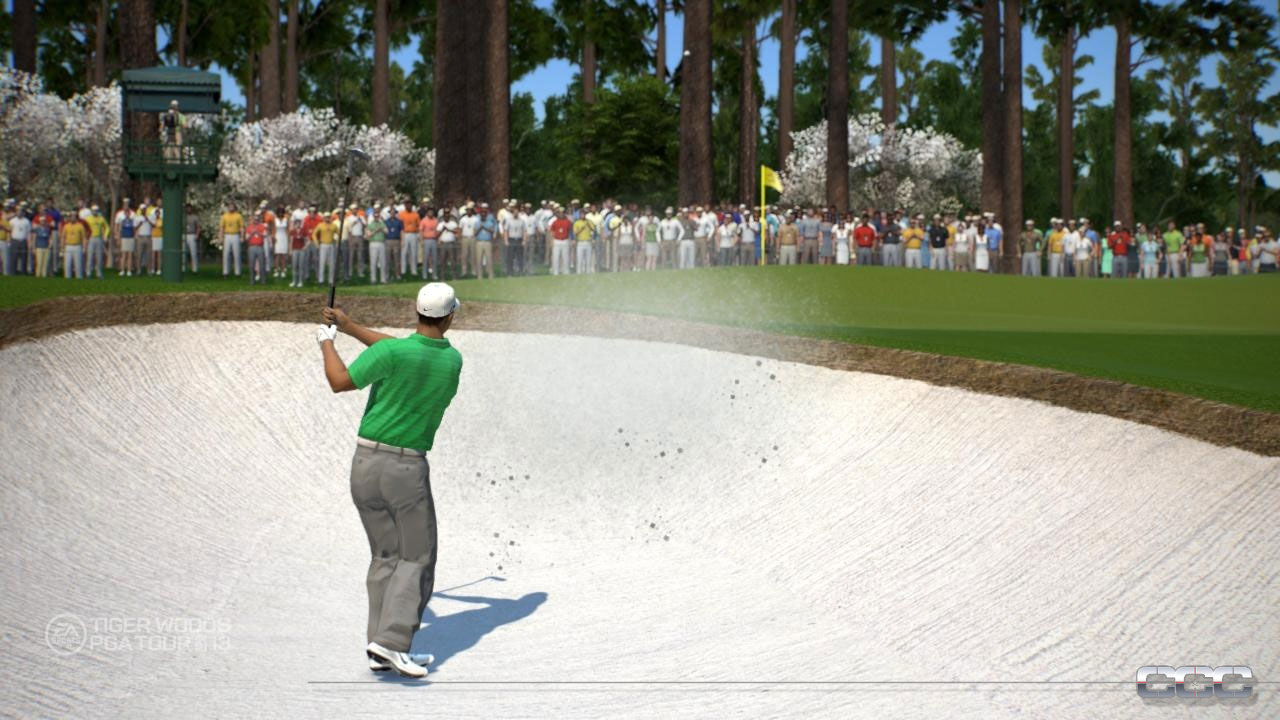 Tiger Woods PGA Tour 13 image